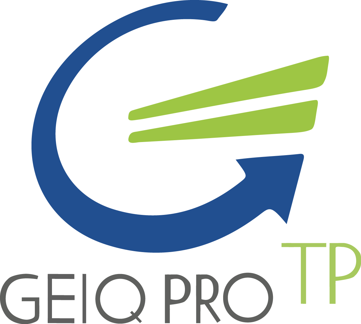 Logo Geiq transparent